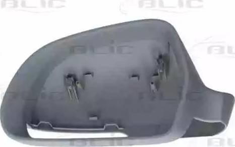 BLIC 6103-43-006353P - Boitier, rétroviseur extérieur www.widencarpieces.com