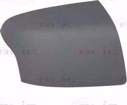 BLIC 6103-01-1352399P - Boitier, rétroviseur extérieur www.widencarpieces.com