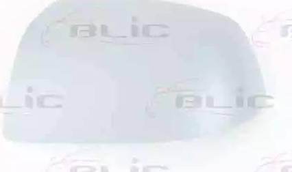 BLIC 6103-01-1311392P - Boitier, rétroviseur extérieur www.widencarpieces.com