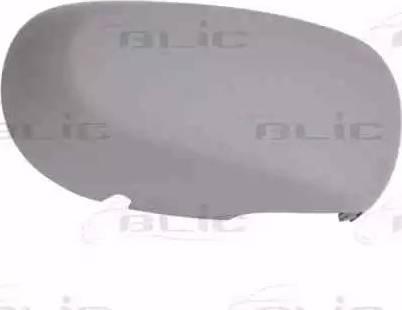 BLIC 6103-01-1312179P - Boitier, rétroviseur extérieur www.widencarpieces.com