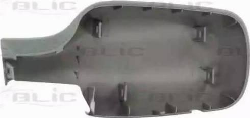 BLIC 6103-01-1312175P - Boitier, rétroviseur extérieur www.widencarpieces.com