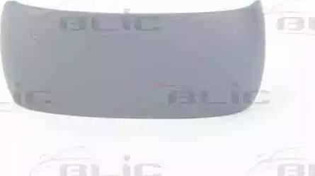 BLIC 6103-01-1321939P - Boitier, rétroviseur extérieur www.widencarpieces.com