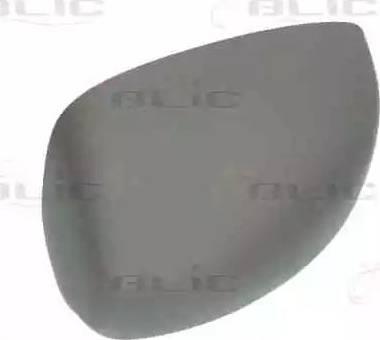 BLIC 6103-01-1321931P - Boitier, rétroviseur extérieur www.widencarpieces.com