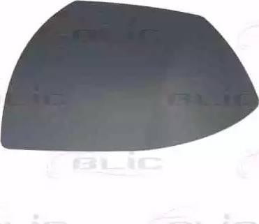 BLIC 6103-01-1321377P - Boitier, rétroviseur extérieur www.widencarpieces.com