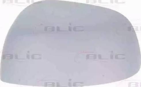 BLIC 6103-07-2001171P - Boitier, rétroviseur extérieur www.widencarpieces.com