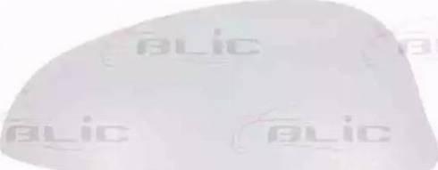 BLIC 6103-23-2001584P - Boitier, rétroviseur extérieur www.widencarpieces.com