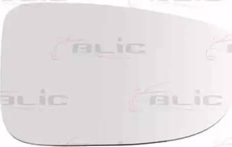 BLIC 6102-14-2001700P - Verre de rétroviseur, rétroviseur extérieur www.widencarpieces.com